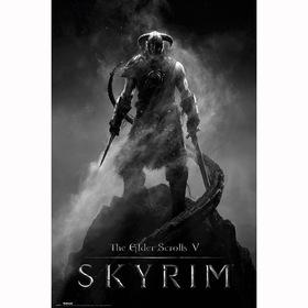 Постер Скайрим - Драконорождённый